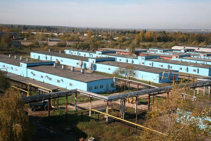 Картинки по запросу свинокомплекс «Томский»