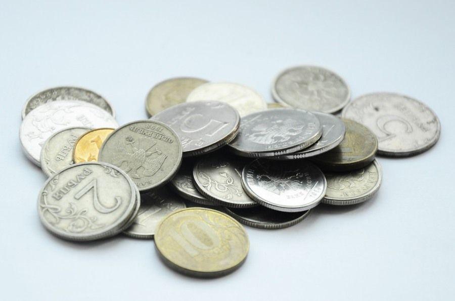 Прожиточный минимум в Томской области вырос на 356 рублей