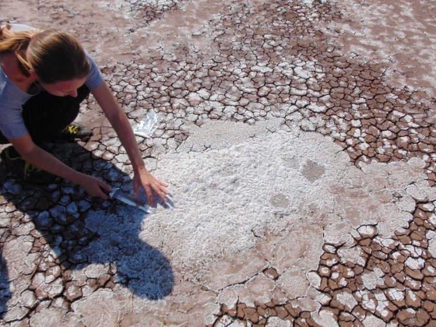 Соль Талого озера вХакасии меняет собственный состав— Ученые