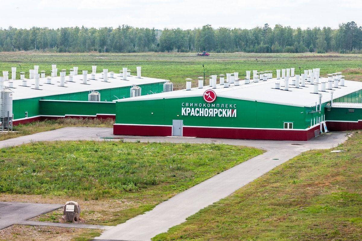 «Сибирская аграрная группа» отправила первую партию субпродуктов в Китай